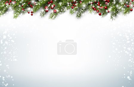 Christmas background with fir branches and holly berries. Vector illustration.