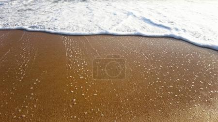 Sandy Wet Beach Close Up