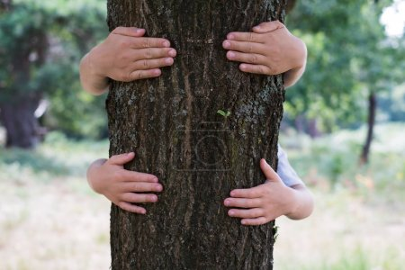 Two children hag or embracing a tree trunk