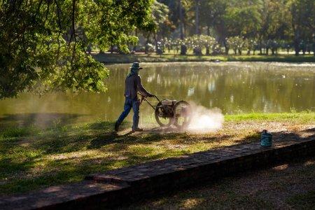 Man cutting lawn in summer day
