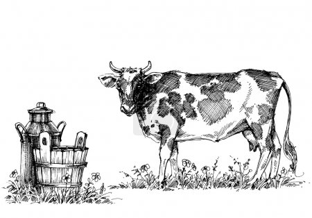 Illustration for Cow and milk vector set - Royalty Free Image