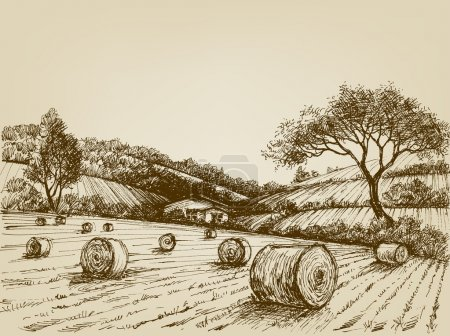 Harvest landscape, farm field and hay bales