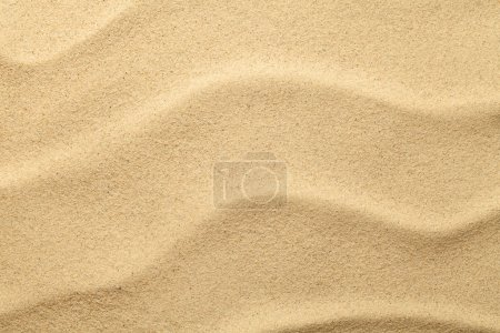 Photo for Sand texture for summer background. Copy space. Top view - Royalty Free Image