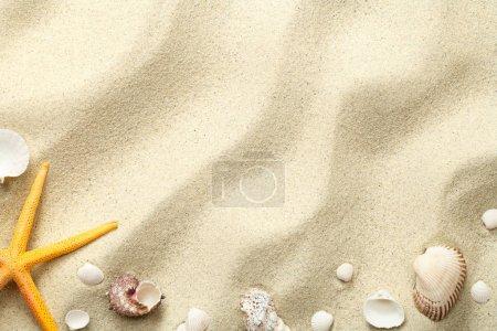Photo pour Fond de sable avec étoiles de mer et coquillages. Texture plage. Espace de copie. Vue du dessus - image libre de droit