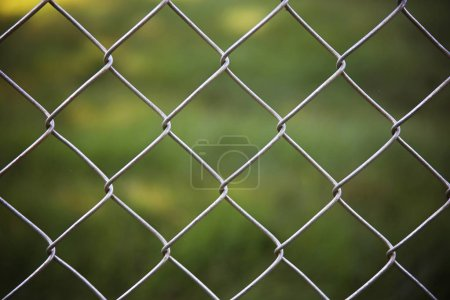 Nice chain link fence in front of green grass