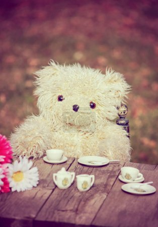 cute teddy bear having a tea party in a backyard during summer, toned with a retro vintage instagram filter effect action or app