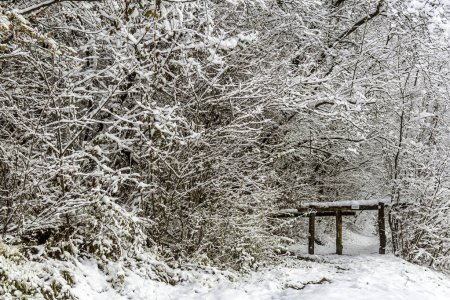 Wooden barrier on a snowy hiking path in the Frenc...