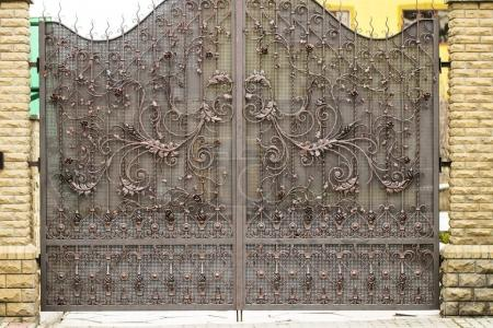 Photo for Gates into the courtyard, Gate view from the street, Forged gates. - Royalty Free Image