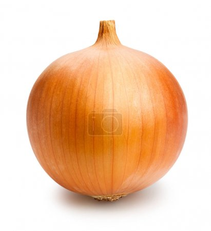fresh spanish onion