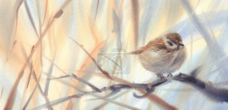little bird sparrow on the branch watercolor background