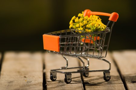 Photo for Miniature shopping trolley sitting on wooden surface with bouquet of yellow flowers inside it, magicians concept. - Royalty Free Image