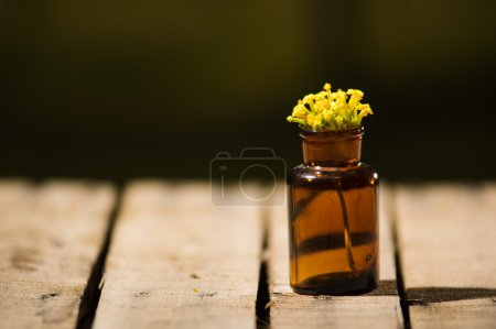 Photo for Small brown medicine bottle for magicians remedy, yellow flowers placed inside, sitting on wooden surface. - Royalty Free Image