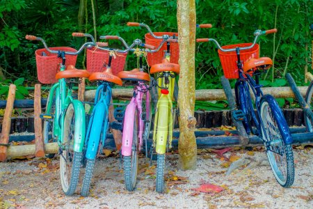 Photo for TULUM, MEXICO - JANUARY 10, 2018: Outdoor view of five bikes parked in a row in the enter of Mayan ruins of Tulum in Quintana Roo,Yucatan Peninsula, Mexico. - Royalty Free Image