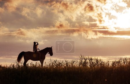 Photo for Attratcive woman relaxing with her horse friend - Royalty Free Image