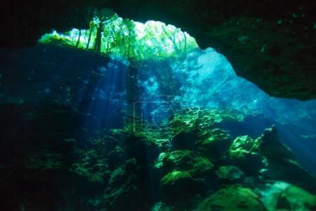 underwater world of Azul cenote