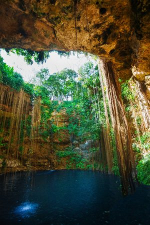 Ik-Kil cenote with roots in Mexico
