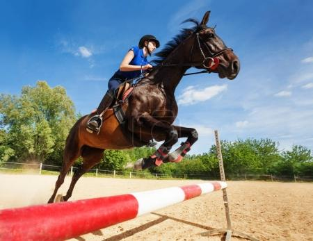 Horse with horsewoman jumping over a hurdle