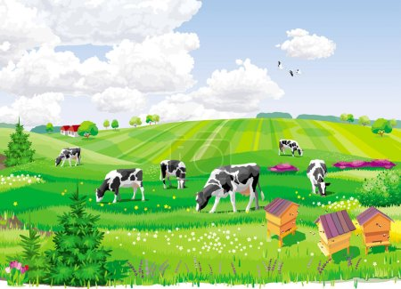 Illustration for Summer rural landscape with fields, cows and apiary. - Royalty Free Image