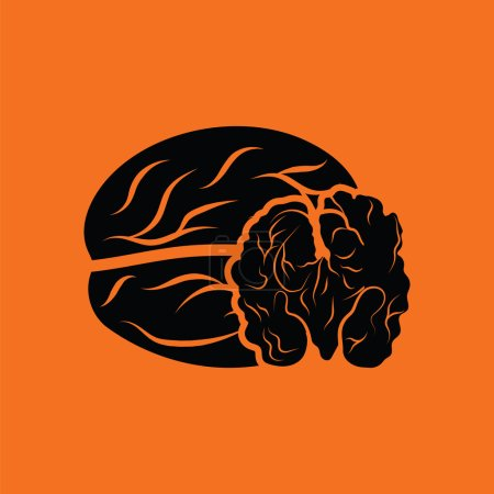 Walnut icon  illustration.