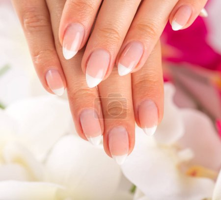 Beautiful womans nails, french manicure.