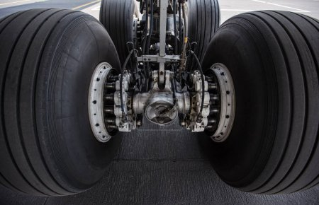 Close-up of main landing gear of modern commercial airplane standing.