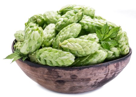 Hop cones in the old wooden bowl.