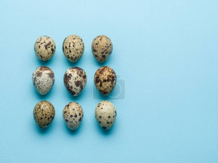 Collection of quail eggs on the blue background.