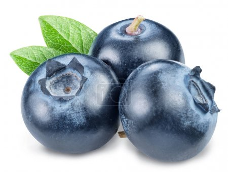 Blueberries and blueberries leaves. Macro shot. File contains cl