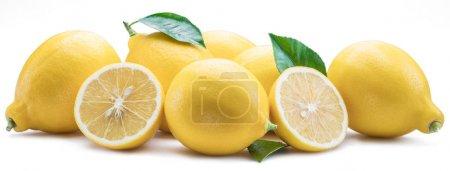 Group of lemon fruits with lemon leaves on the white background.