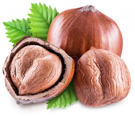 Hazelnut, kernel of hazelnut and green leaves. Clipping path.