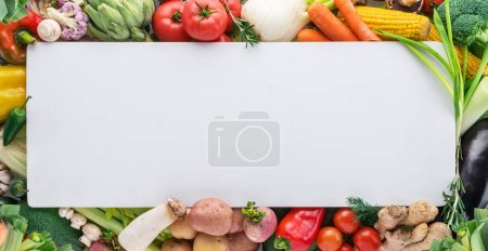 Different colorful vegetables arranged as a frame on white backg