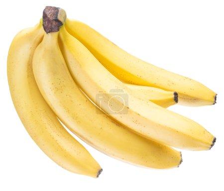 Foto de Montón de plátano en el fondo blanco. - Imagen libre de derechos
