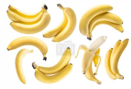 Foto de Racimos de plátano en el fondo blanco - Imagen libre de derechos