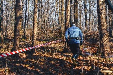 Foto de Logoisk Bielorrusia Sendero del escarabajo 8 LOGOISK Un atleta adulto corre por el bosque en un día soleado de otoño. - Imagen libre de derechos