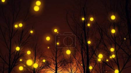 Yellow Lights in an Autumn Forest