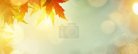 ID de imagen B125219880