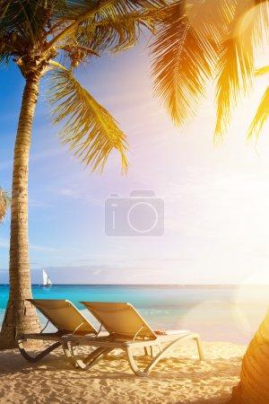 Photo pour Art plage de la mer tropicale ; vacances au Palms Resort - image libre de droit