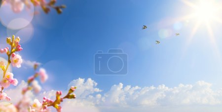 Photo for Abstract Spring landscape background with flying birds and Spring flower - Royalty Free Image