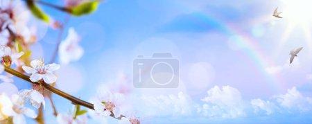 Photo pour Fond de fleurs de printemps; Paysage de Pâques - image libre de droit