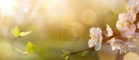 Photo for Spring flower background; Easter landscap - Royalty Free Image