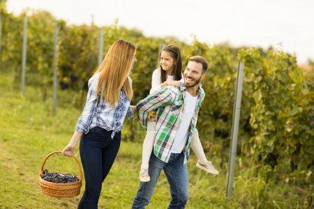 glückliche Familie im Weinberg