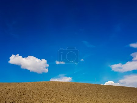 Arable land in Tuscany