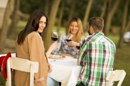 People enjoy dinner in vineyard
