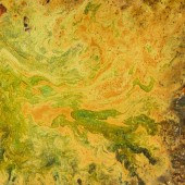 An unusual background with orange and yellow divorces. Blots and stains.