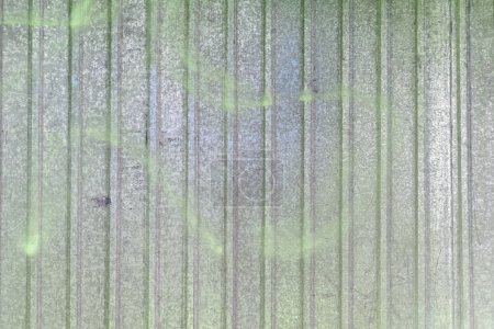 Photo pour Mur en tôle. Beau fond blanc avec débordements verts colorés. Texture du métal ondulé . - image libre de droit