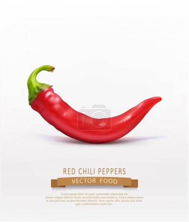 Vector red hot chilli pepper isolated on white background