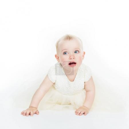 Photo for Little Princess in white dress crawls in studio over white background, high key. Cute little baby girl. Child's portrait. - Royalty Free Image