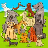 breed dogs cartoon characters group