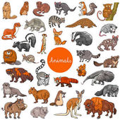 wild mammals animal characters big set