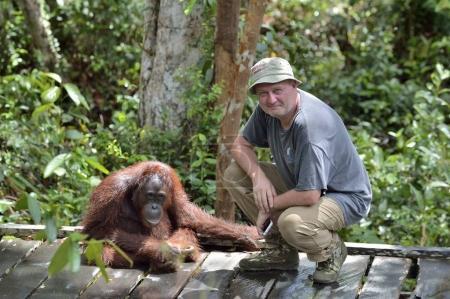The man playing with orangutan monkey. Tropical Rainforest
